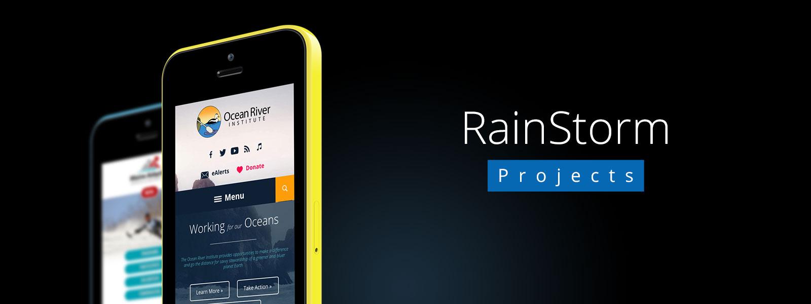 RainStorm Projects